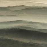 Wśród porannych mgieł...