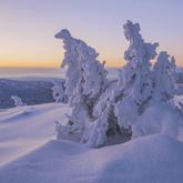 Śnieżny poranek...