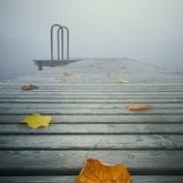 Autumn Jetty