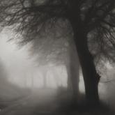 jesienny dżdżysty poranek