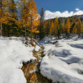 Jesienna zima
