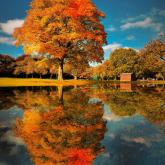 Parkowa jesień