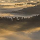Poranek...wśród mgieł...