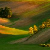 Morawskie klimaty
